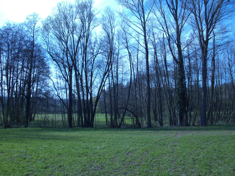9spaziergang-in-oberoewisheim-entdecke-kraichtal (11)