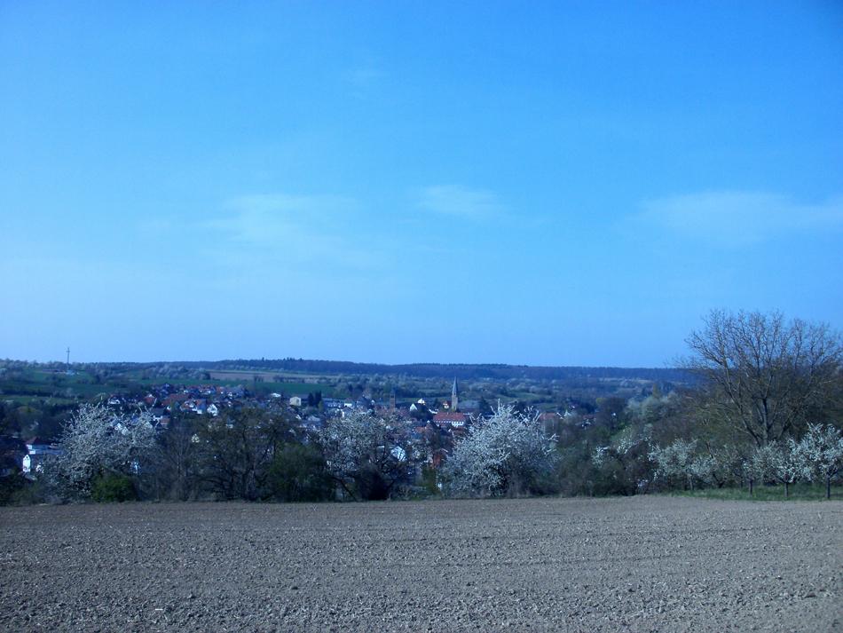 oberoewisheim