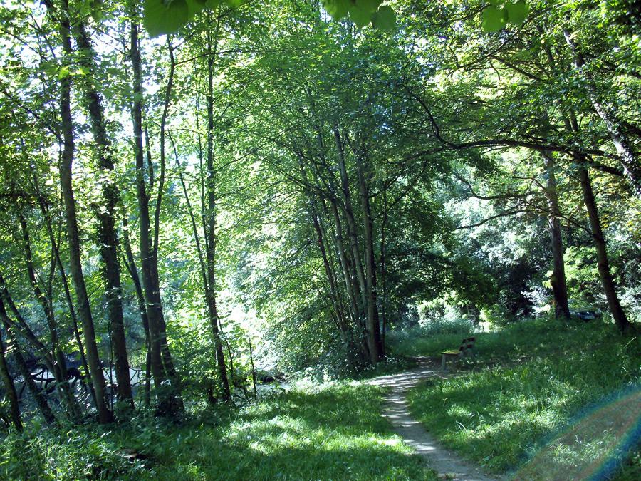 Pfannwaldsee