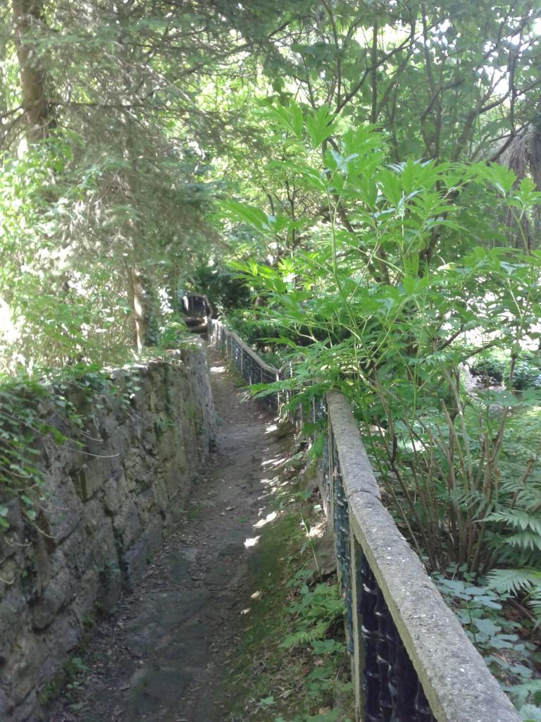 Asiatischer Garten Kraichtal Münzesheim 2014