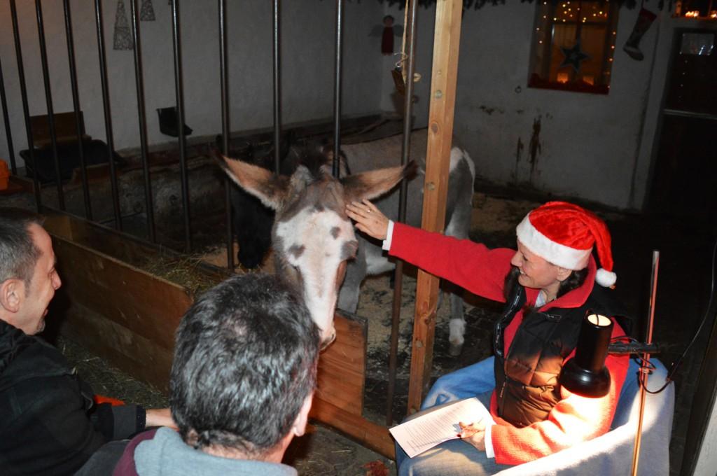 weihnachten im eselstall 2014