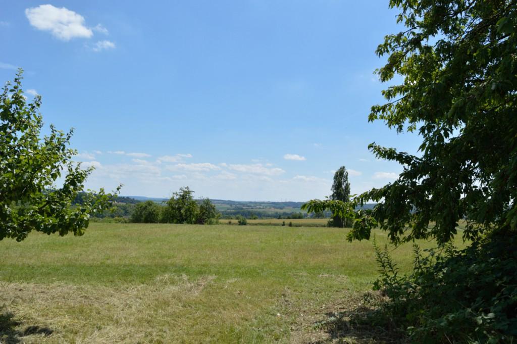 kraichtal-oberoewisheim-juni2015 (16)