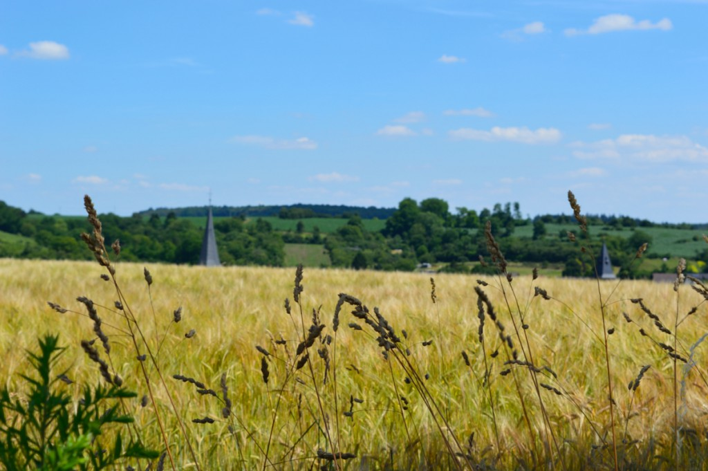 kraichtal-oberoewisheim-juni2015 (21)