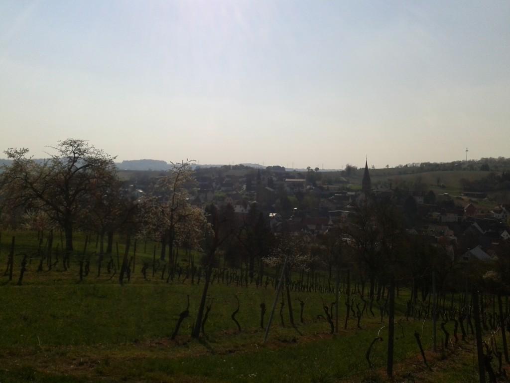 Zwischen Oberöwisheim und Neuenbürg