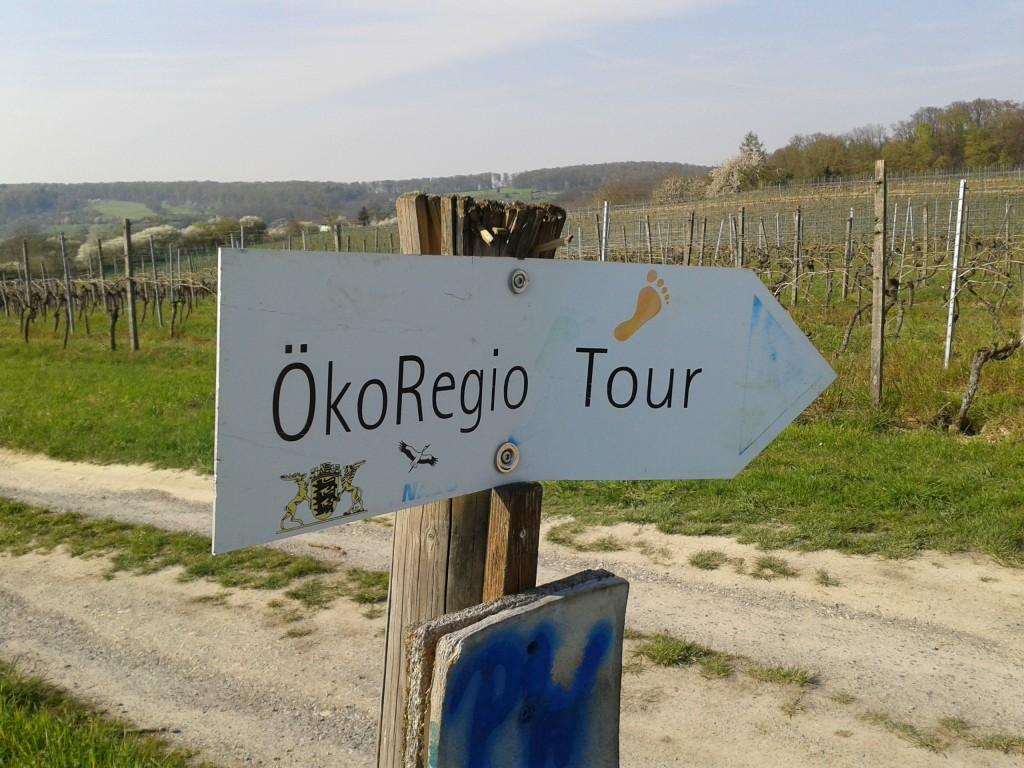 Wanderweg zwischen Oberöwisheim und Neuenbürg