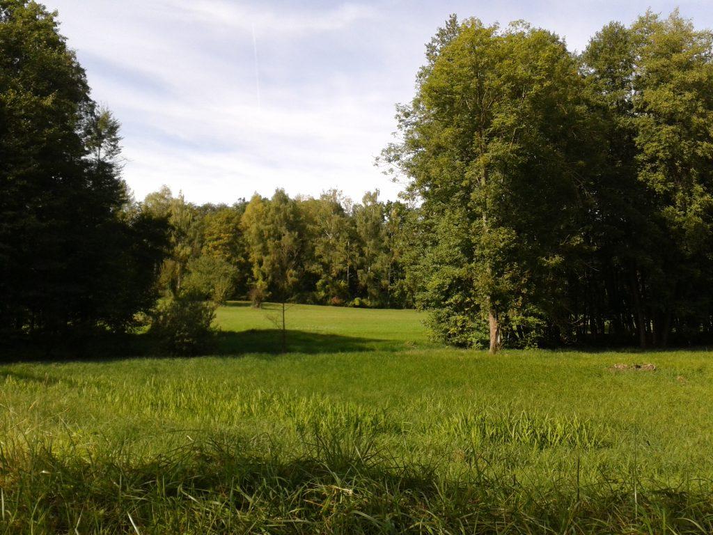 frueher-herbst-in-kraichtal-spaziergang-entdecke-kraichtal-9